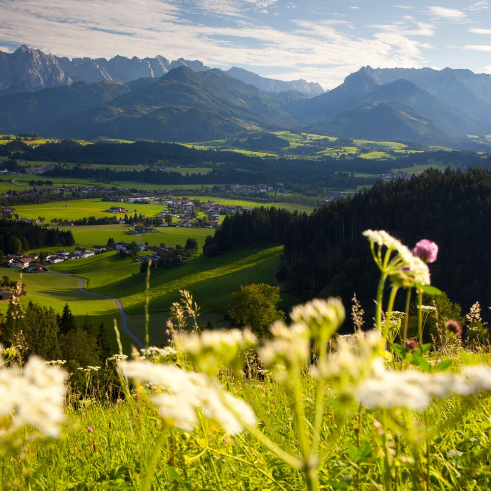 holiday in the mountains of tyrol | © Bernhard Bergmann